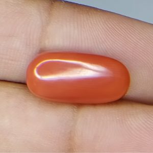 Natural Italian Coral | 6.15ct. | 6.76_ratti@660/-
